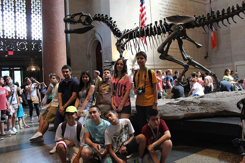 New York Excursion Natural History Museum
